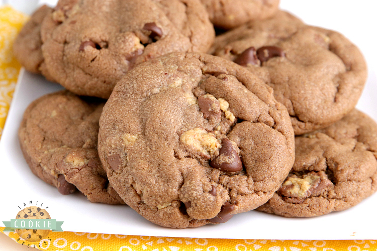 Chocolate peanut butter cookies with peanut butter cups