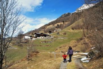 Braggio walk from farm