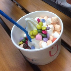 De Hallen - Even the Ice Cream is delicious and kind of healthy: healthy Frozen Yoghurt with not so healthy topings