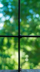 windows-1574209_960_720