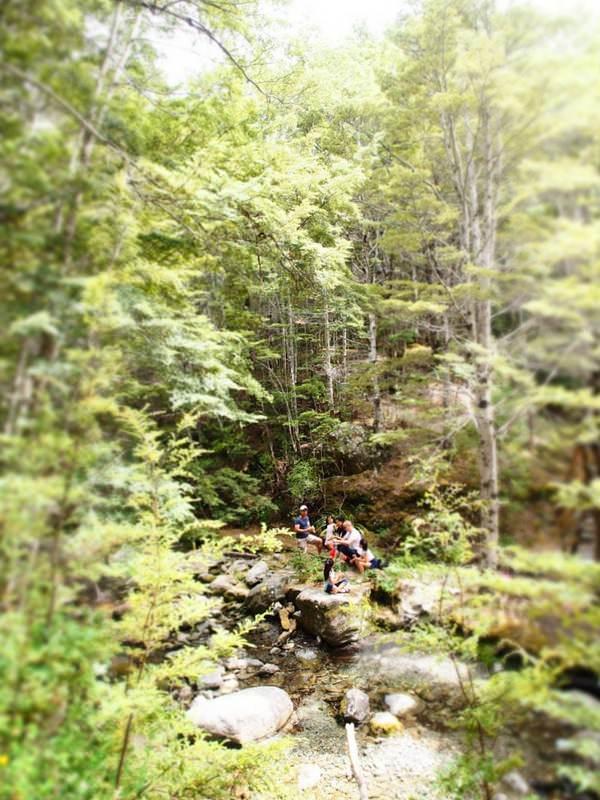 Queenstown Hiking Trail Family Mt Crichton