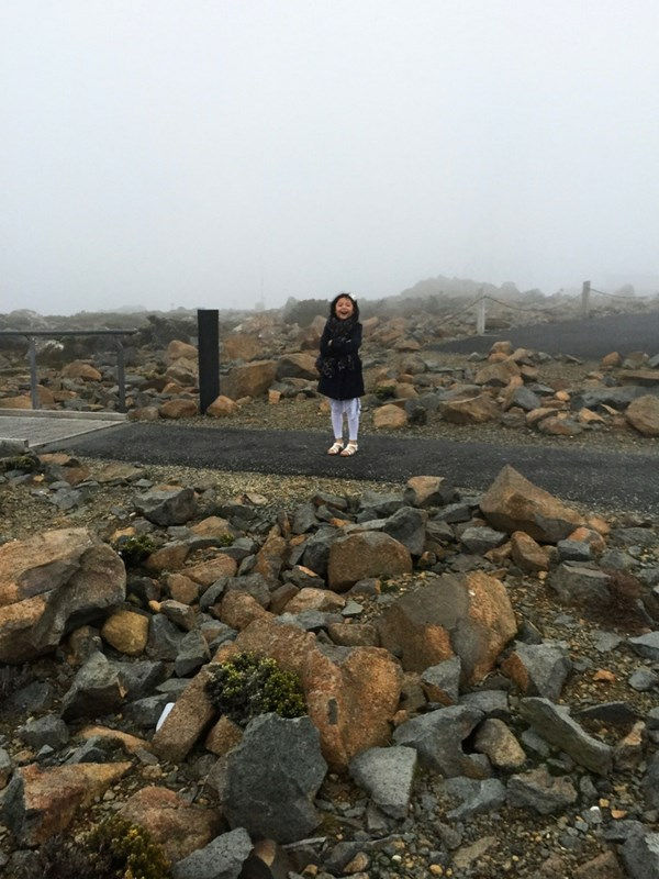 Mt Wellington girl foggy