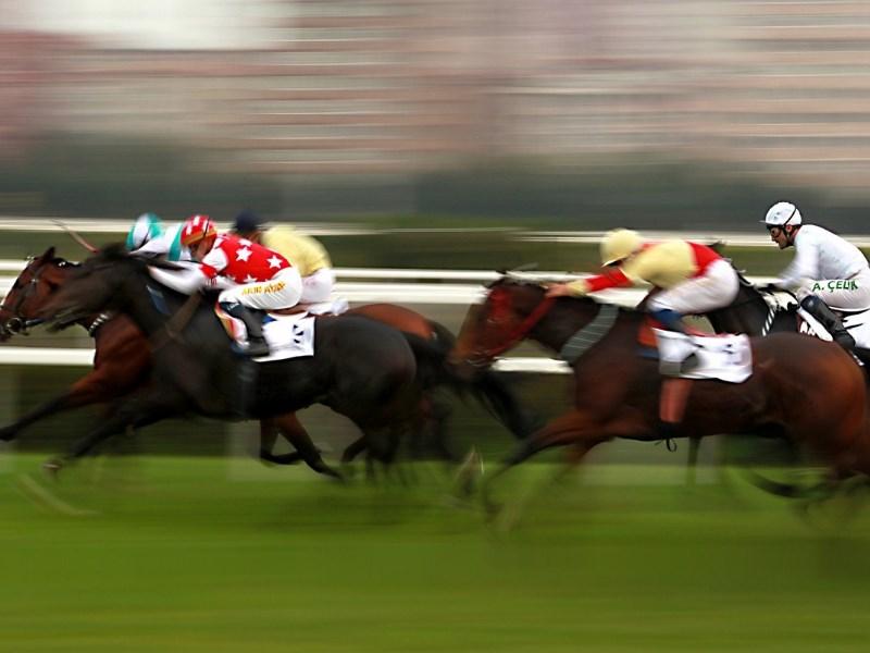 Melbourne Cup Spring Racing Carnival 4 horses Jockeys
