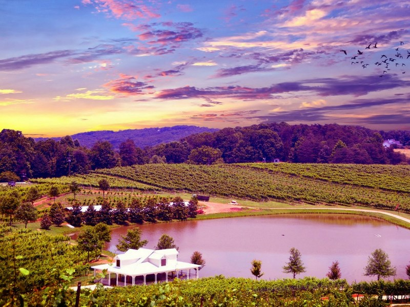 California Road Trip Itinerary Napa Valley