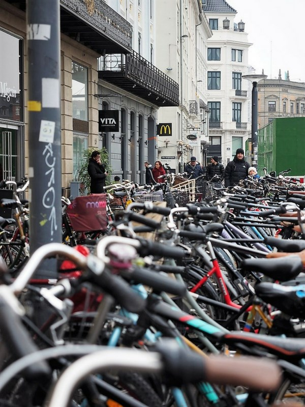 Copenhagen on a Cargo Bike Bicycles