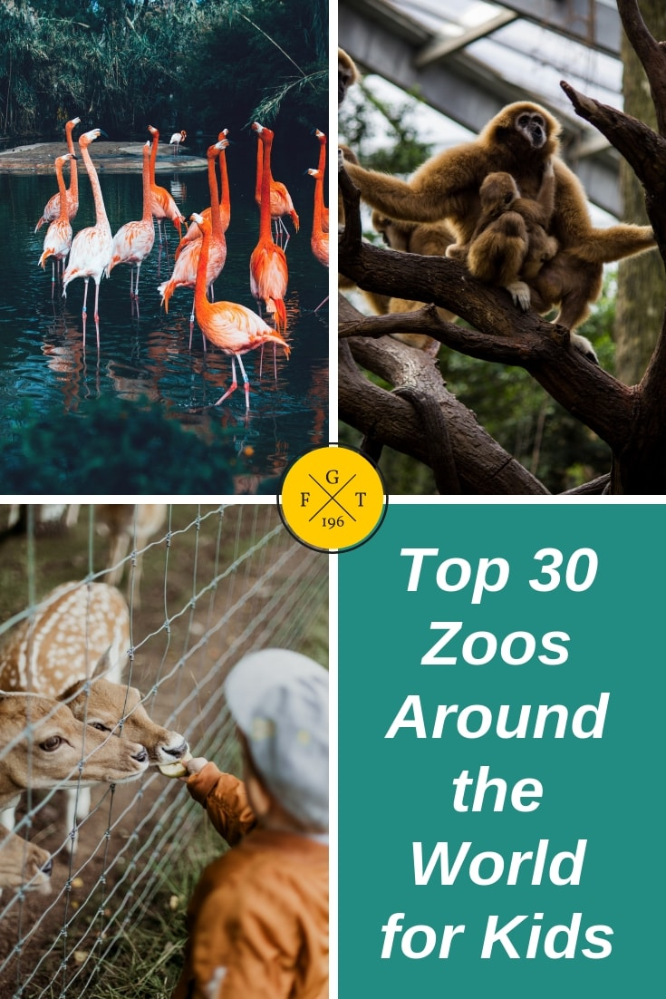 Top 30 Zoos Around the World for Kids