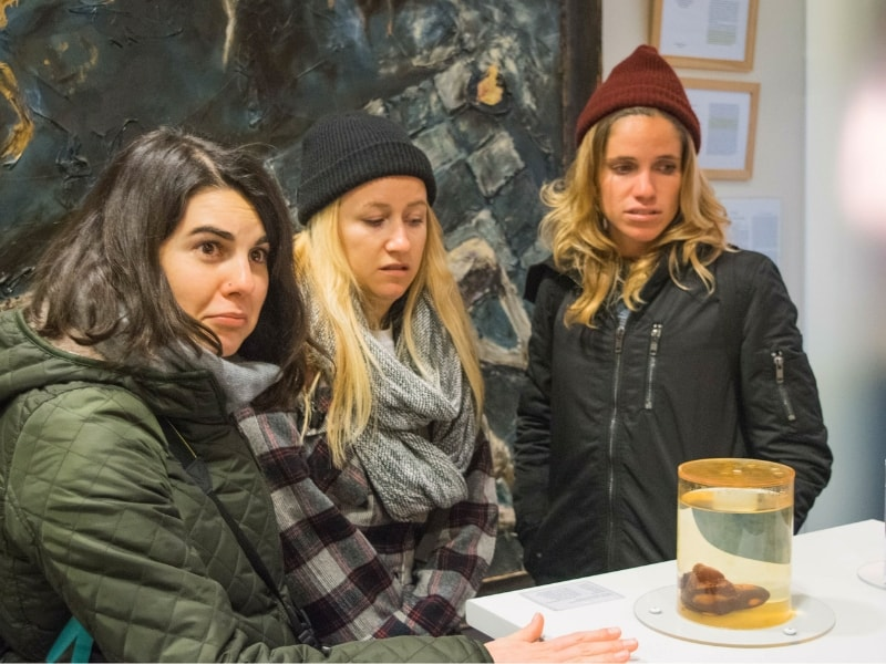 16 Quirky, Gross and Weird Museums for Teens Around the World