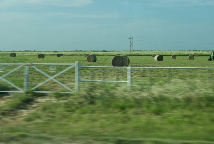 The fields are plenty and beautiful in Texas