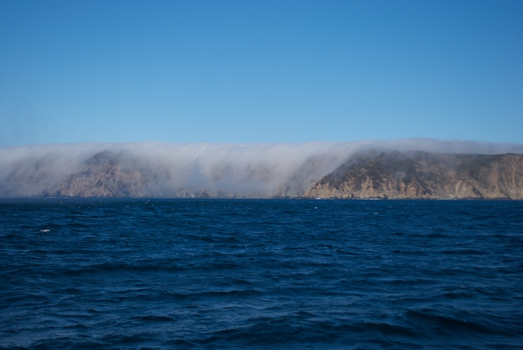 The fog, forcing its way over the hills off Drake's Bay
