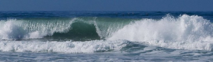 The same swell that held us longer in Monterey, also created beautiful large breakers on the beach