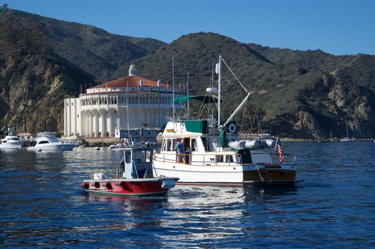 Right upon arrival to the harbor, yachts are greeted by the patrol boats, who promptly assign a mooring and give a hand if necessary. Note the Catalina Casino building on the background