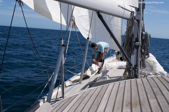 Sailing with double headsails - we discovered Pesto likes to be a cutter. And it is not that difficult to set.