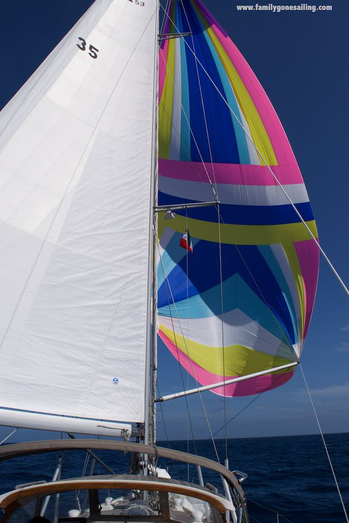 It was one great day of sailing out there !