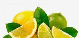 أكل الحمضيات بكثرة قد يسبب سرطان الجلد .