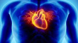 اسباب أمراض القلب و سبل العلاج .
