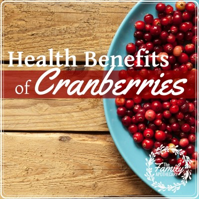 Cranberries are an incredible source of nutrients, and are a delicious addition in holiday meals! Check out the health benefits of cranberries here! #cranberries #antioxidant #immuneboosing #winter #winternutrition For more great healthy living topics, visit www.TheFamilyApothecary.com