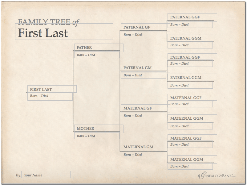 family tree template finder  free charts for genealogy