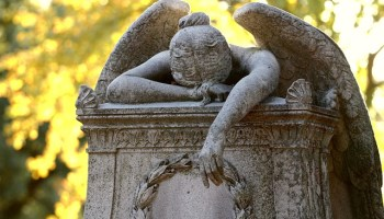 Complaints Ignored As New Find A Grave Site Is Getting Worse | FHF com