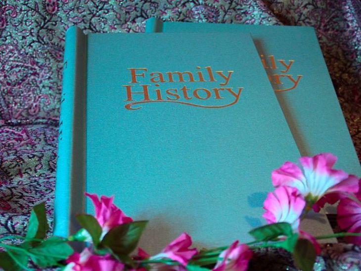 Irish Family History To 1850