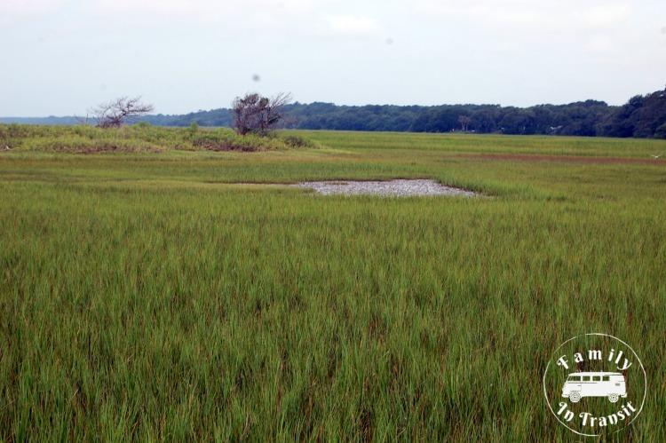Botany Bay, Edisto Island, SC