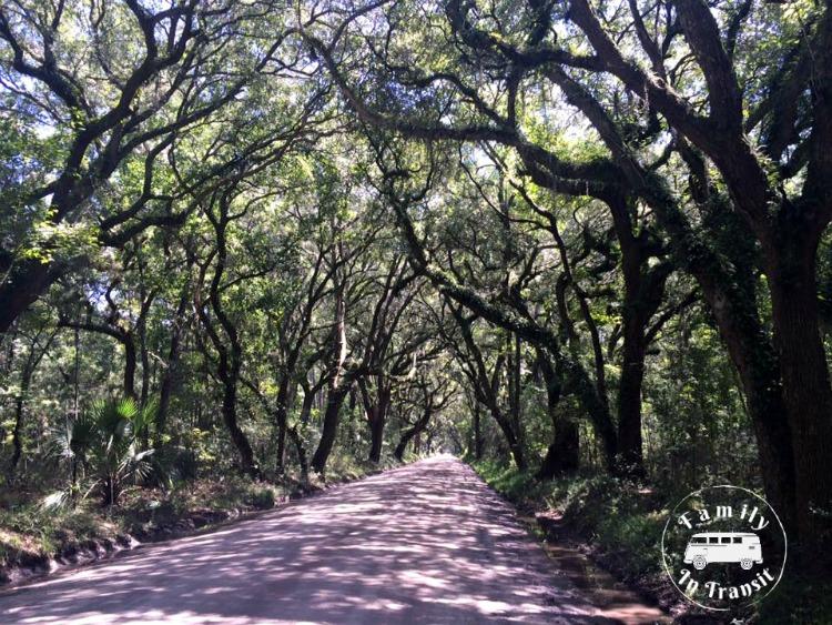 Botany Bay, South Carolina