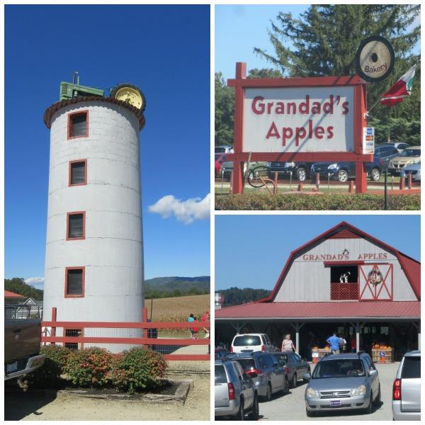 Grandads Apples