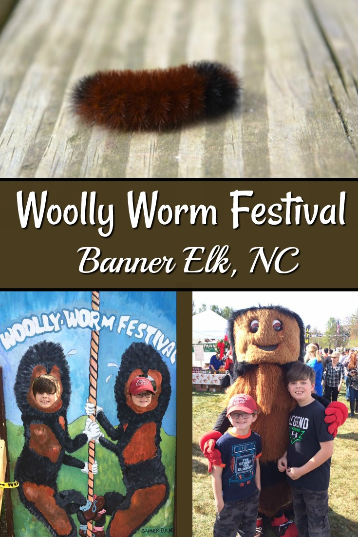 Woolly Worm Festival