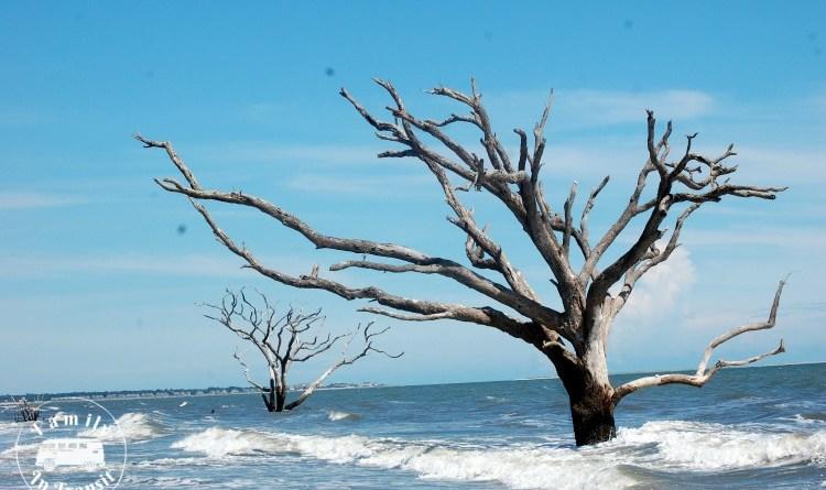 Botany Bay