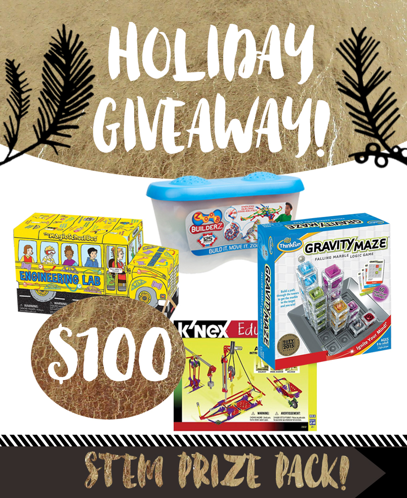 Holiday Giveaway for Kids! $100 STEM Prize Pack!