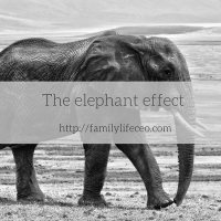 The elephant effect: the tenth one is not a dime less spectacular than the first one