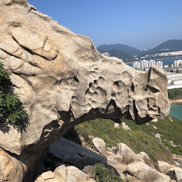 Rhino Rock family hike featured