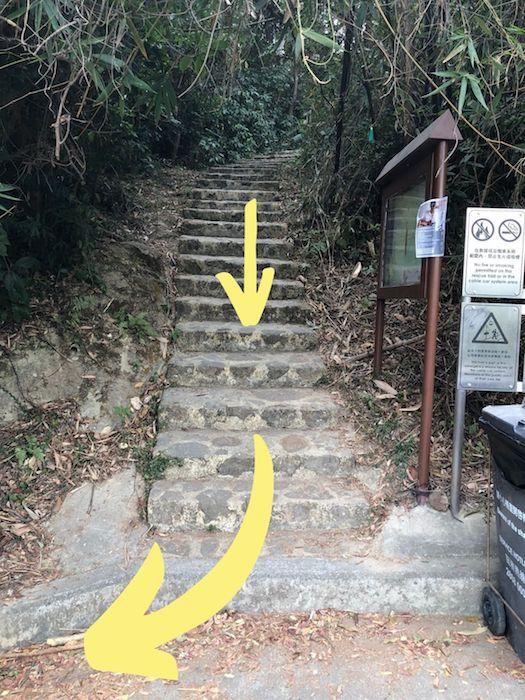 Ngong Ping Tung Chung hike