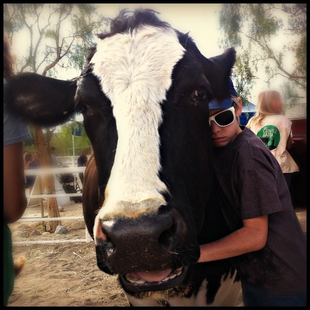 The Honea Vegetarian Story