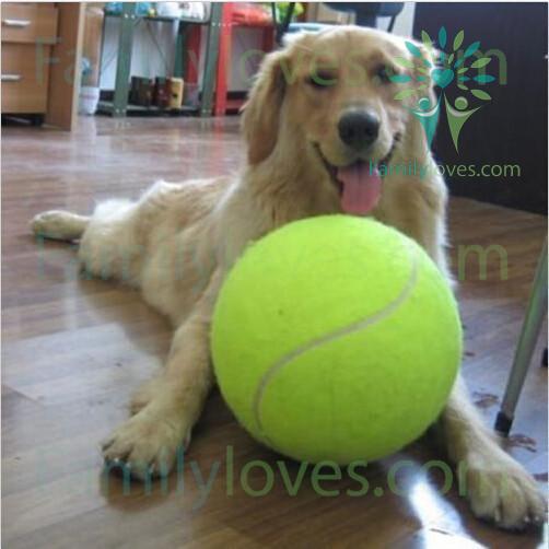 1pc-24cm-big_098cb566-3e7e-20c7-0355-018d7d602e6f 1PC 24CM Big Inflatable Tennis Ball Giant Pet Toy Tennis Ball Dog Chew Toy Signature Mega Jumbo Kids Toy Ball Outdoor Supplies  %tag