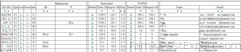 Example of DNA matches displayed in the GEDMatch tool. (Kit numbers, names and email addresses removed.0
