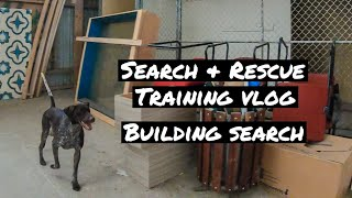 Search Rescue Building Search Dog Training Vlog - Search & Rescue - Building Search | Dog Training Vlog