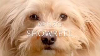 Dog Training Kenzo Mixed Breed Down Spin Crawl Stop Fetch Toy Jump Up - Dog Training: Kenzo (Mixed Breed) - Down, Spin, Crawl, Stop, Fetch Toy, Jump Up