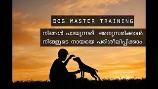 Dog Training Tutorial In Malayalam Master Training Basic Training 1 - Dog Training Tutorial In Malayalam ( Master Training ) Basic Training 1