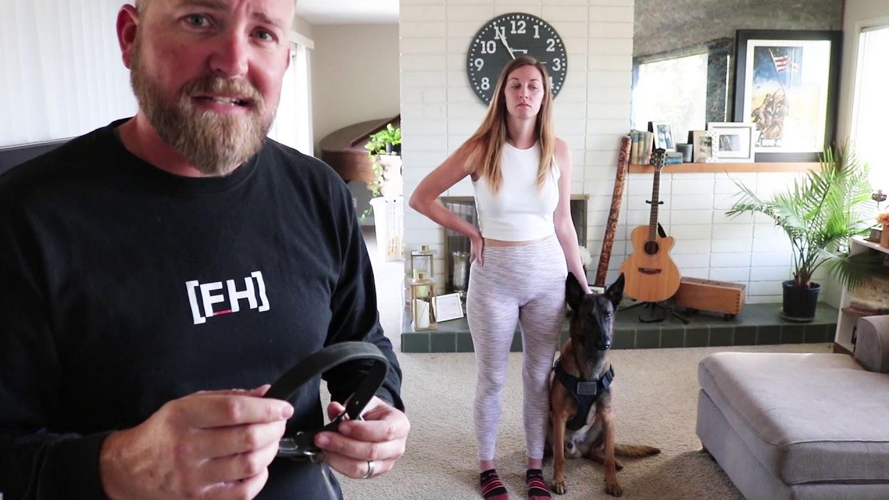 Dog Training Video for Sean n Mama - Dog Training Video for Sean n Mama