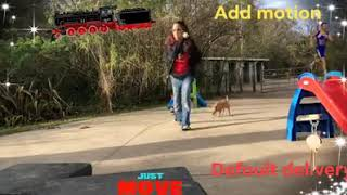 Dog training 13 - Dog training