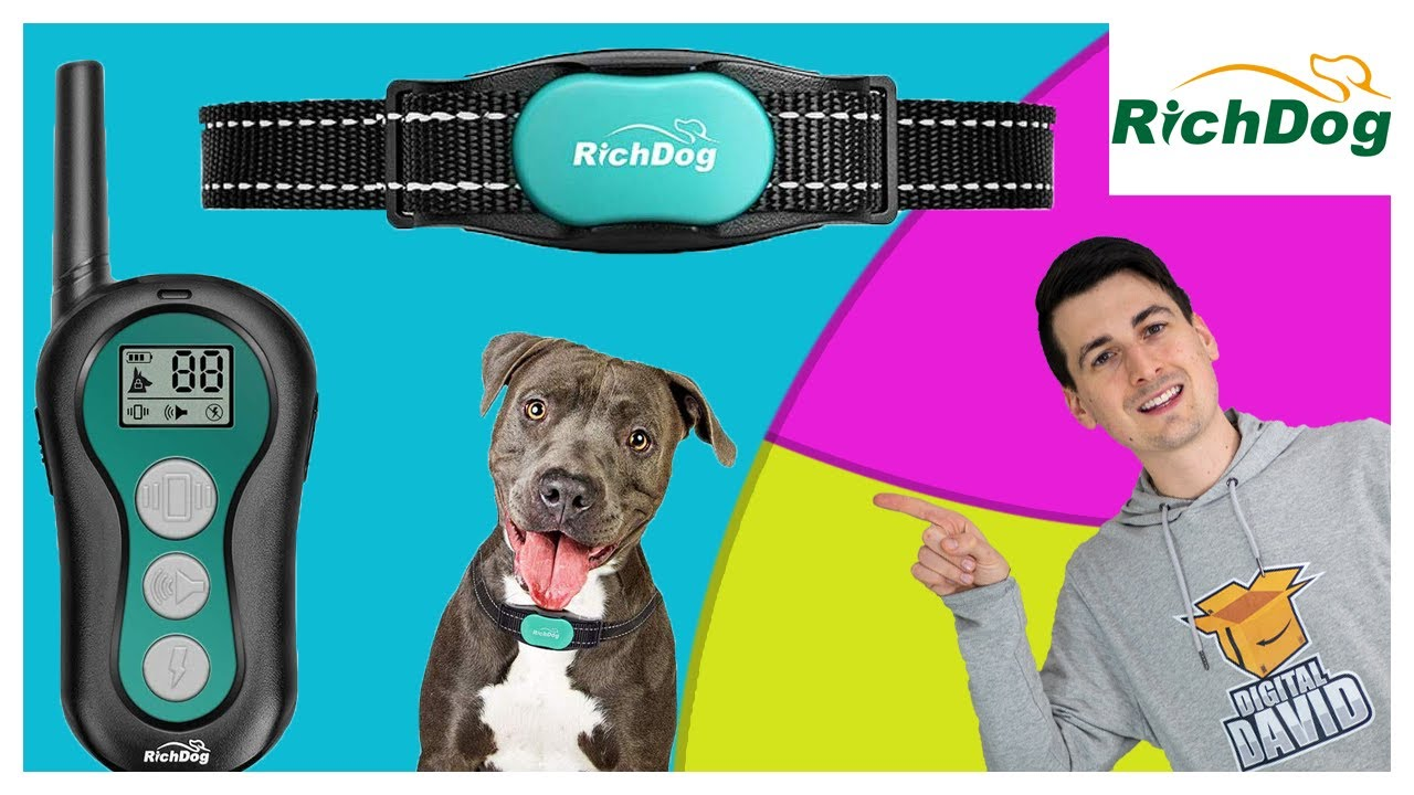 Dog Training Collar Setup RICHDOG Rechargeable Dog Shock Collar With Remote - Dog Training Collar Setup // RICHDOG Rechargeable Dog Shock Collar With Remote
