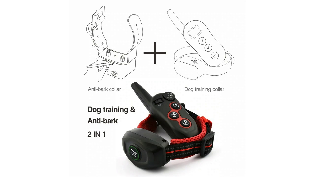 Best Pet Training Collar Rechargeable for 2 Dogs - Best Pet Training Collar Rechargeable for 2 Dogs