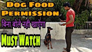 Dog Food Permission How To Train Dog Food Permission Dog Training Doberman - Dog Food Permission | How To Train Dog Food Permission | Dog Training Doberman