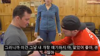 Dog training collar with remote what is the difference between shock collar and e collar  - Dog training collar with remote + what is the difference between shock collar and e collar 공격성 개 훈련