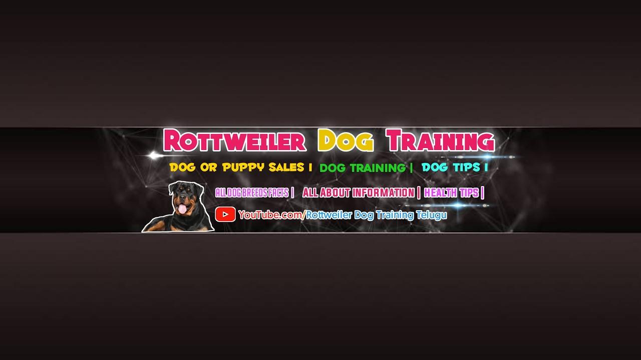 Top 5 Dog Tips Telugu in Rottweiler Dog Training Telugu - Top 5 Dog Tips || Telugu || in Rottweiler Dog Training Telugu