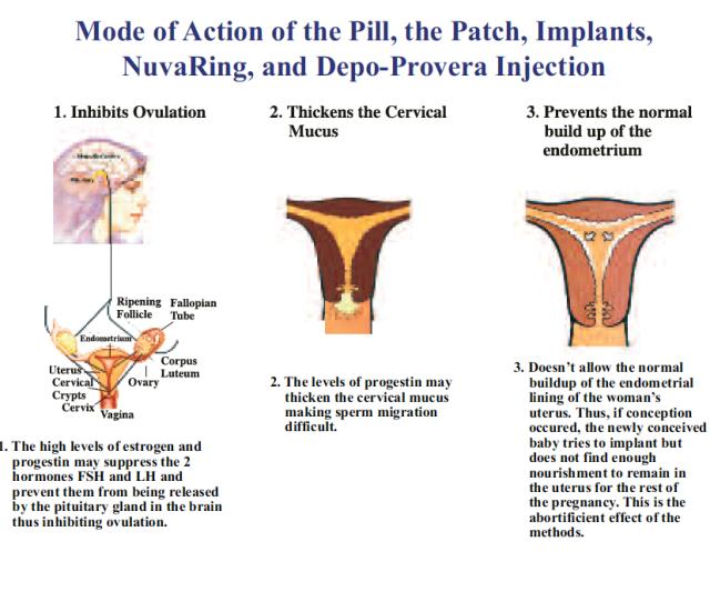 Artificial Methods Of Birth Control