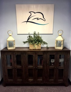dolphin lawyer painting and furniture