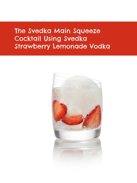 SVEDKA Main Squeeze
