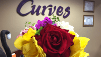 Why Curves Works And How My Results Motivated Me