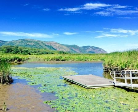 Constitution Marsh Sanctuary